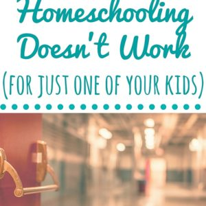 Ten years into homeschooling, all seemed good, except for one big problem. Every day it was becoming more apparent that one of my children was not benefiting from home education. We weren't reaching our goals for homeschooling and needed to make a change. Read to discover how it worked out.